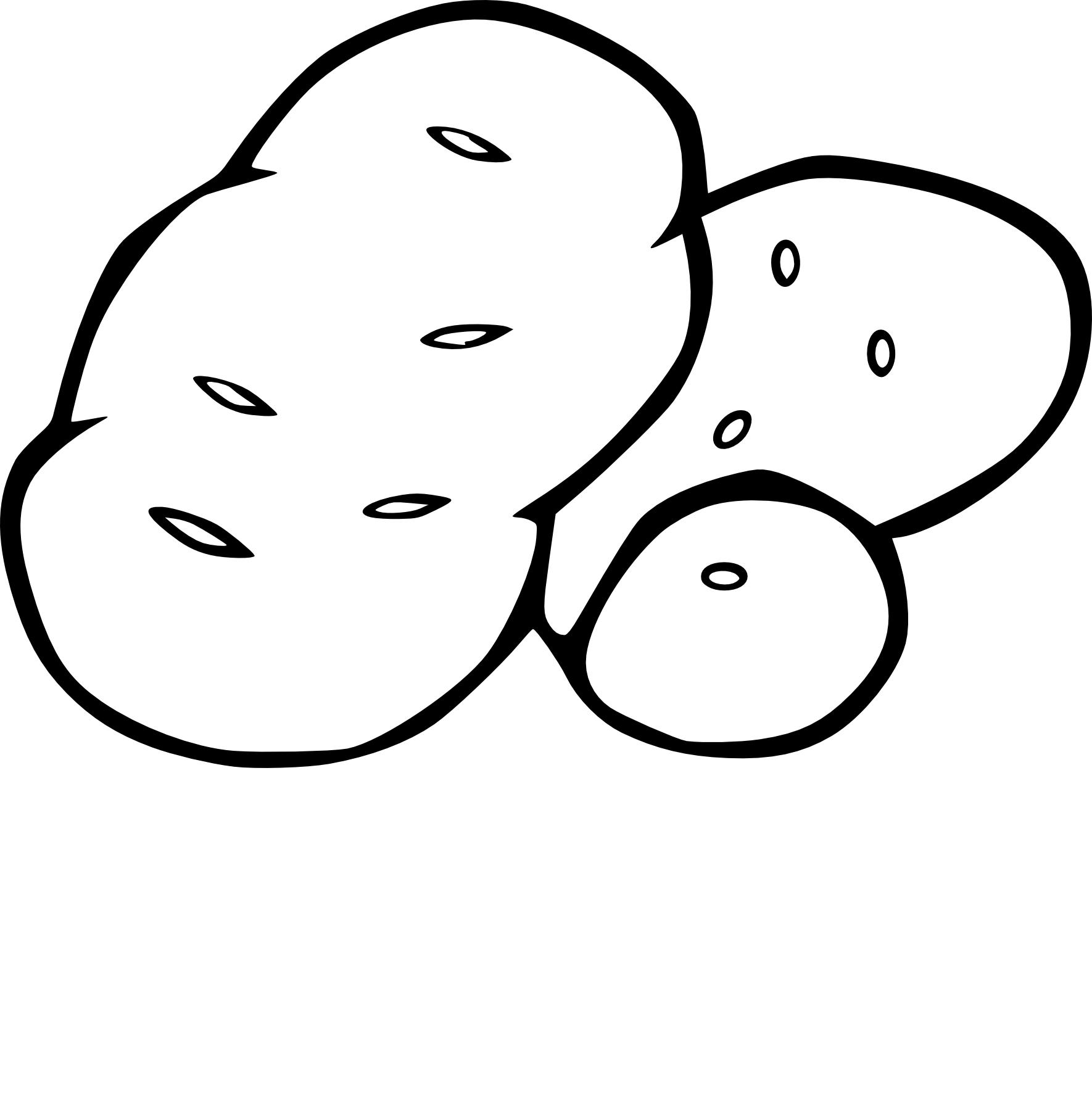 Pomme de terre dessin
