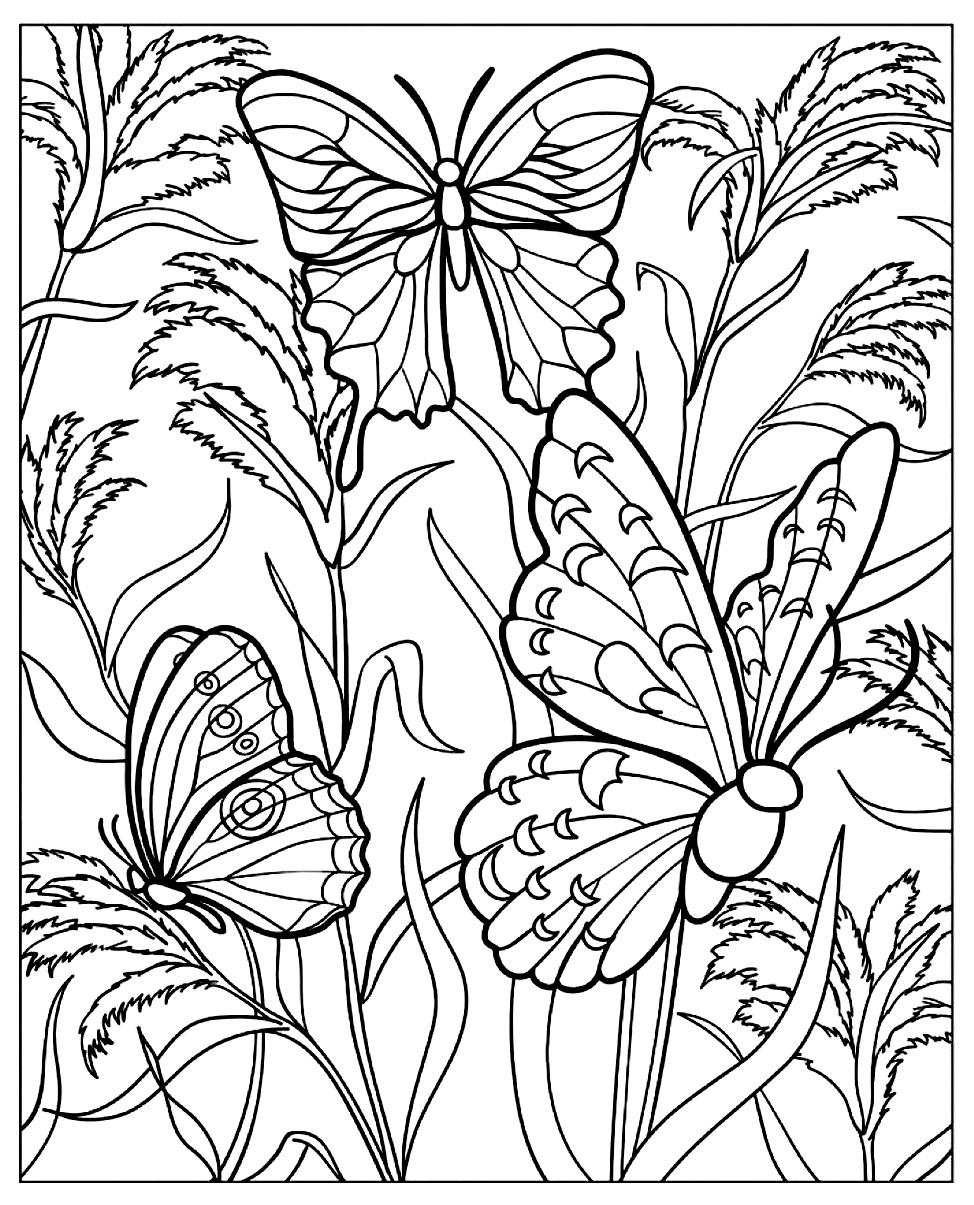 Coloriage difficile papillon