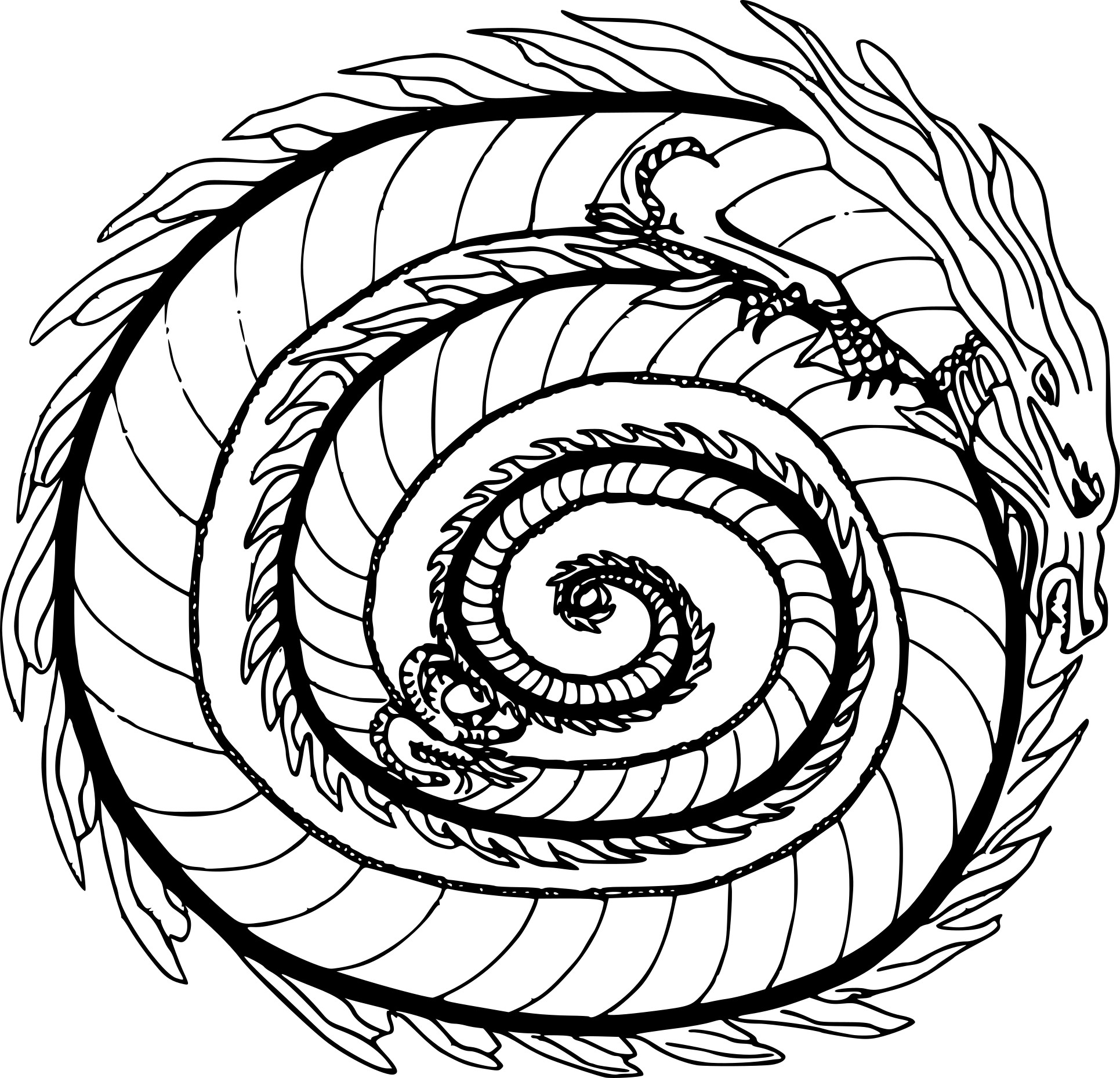 Coloriage mandala dragon