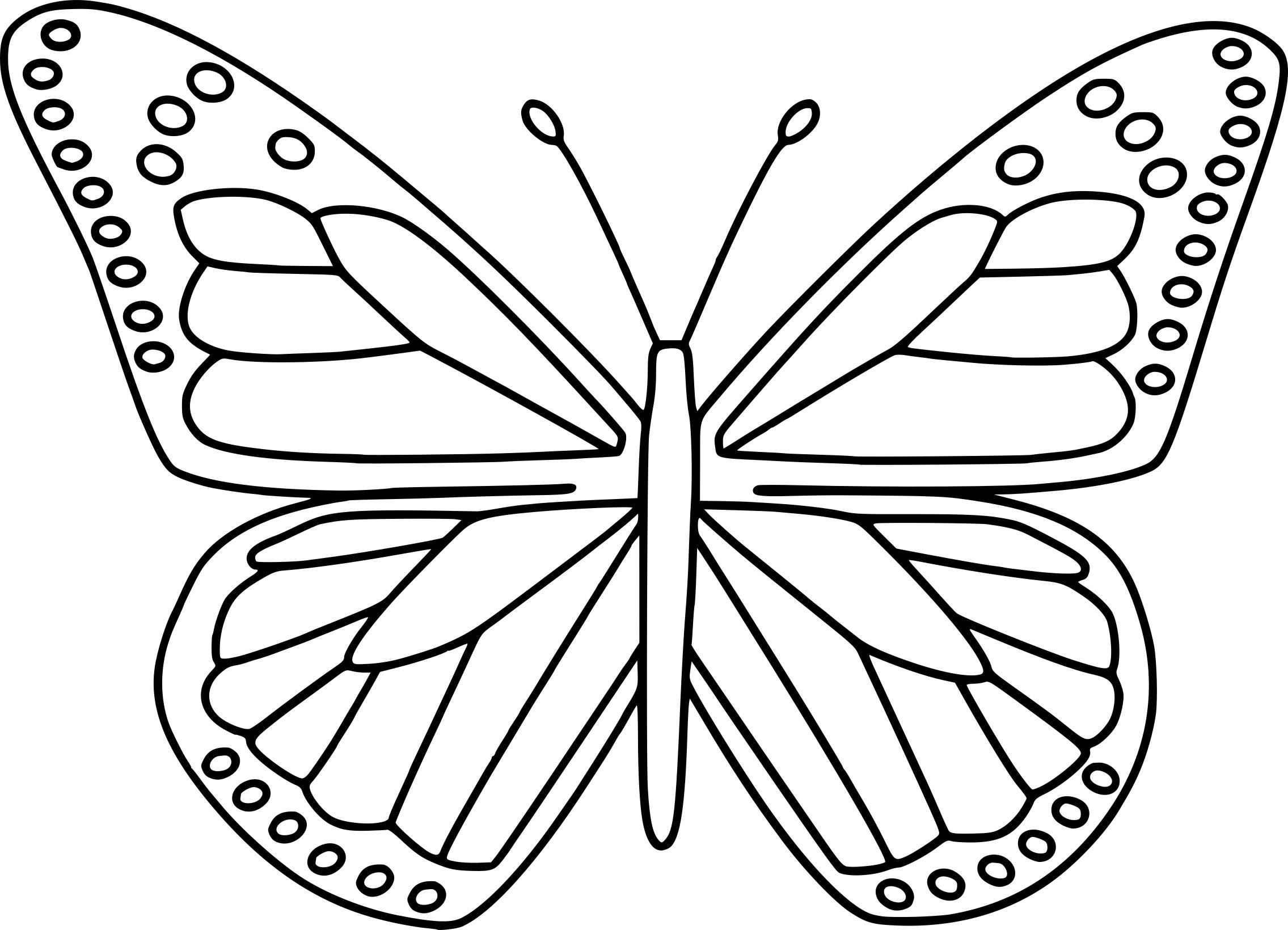 Coloriage Papillon Et Dessin A Imprimer