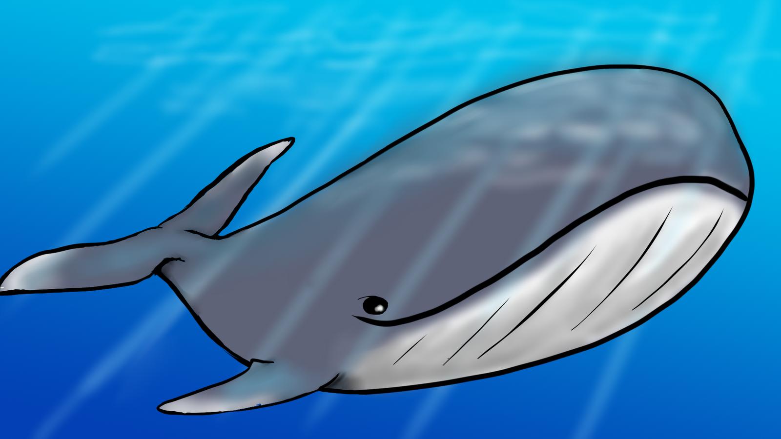 Coloriage baleine imprimer - Pokemon baleine ...
