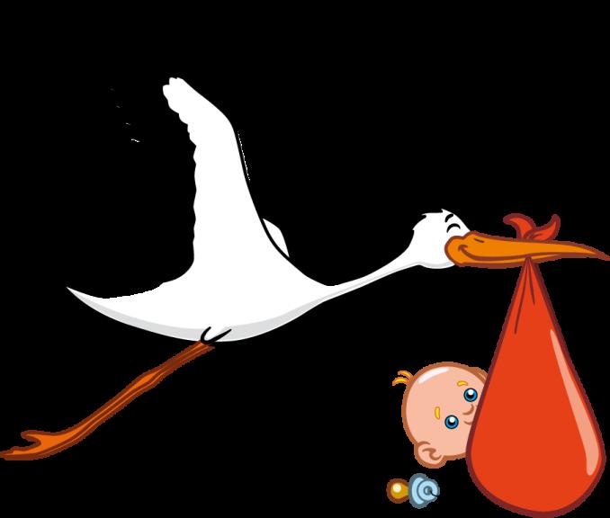 Cigogne et un bebe