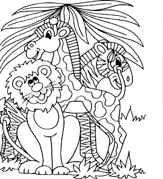 Coloriage animaux de zoo