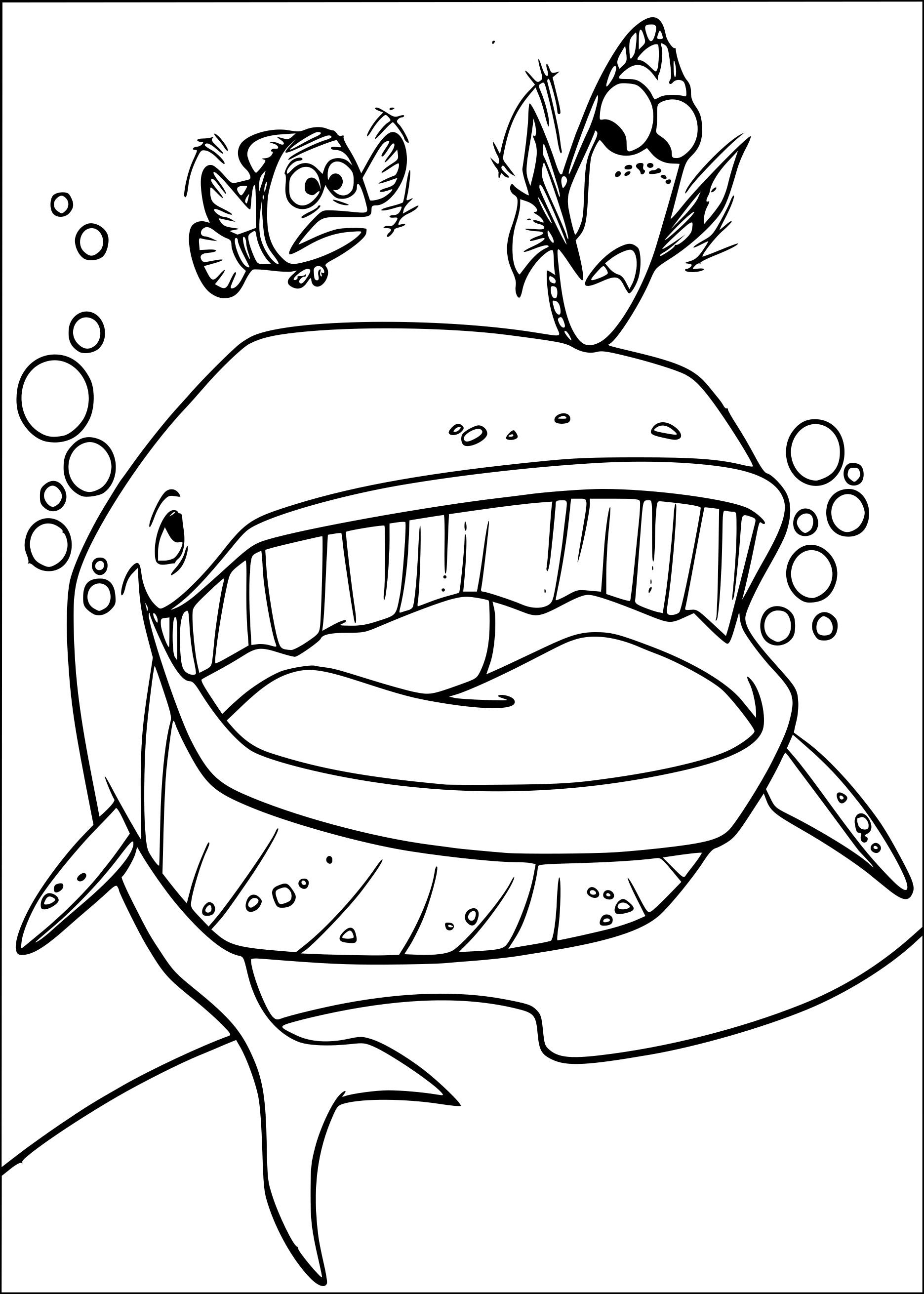 Coloriage baleine imprimer - Coloriage de requin a imprimer ...