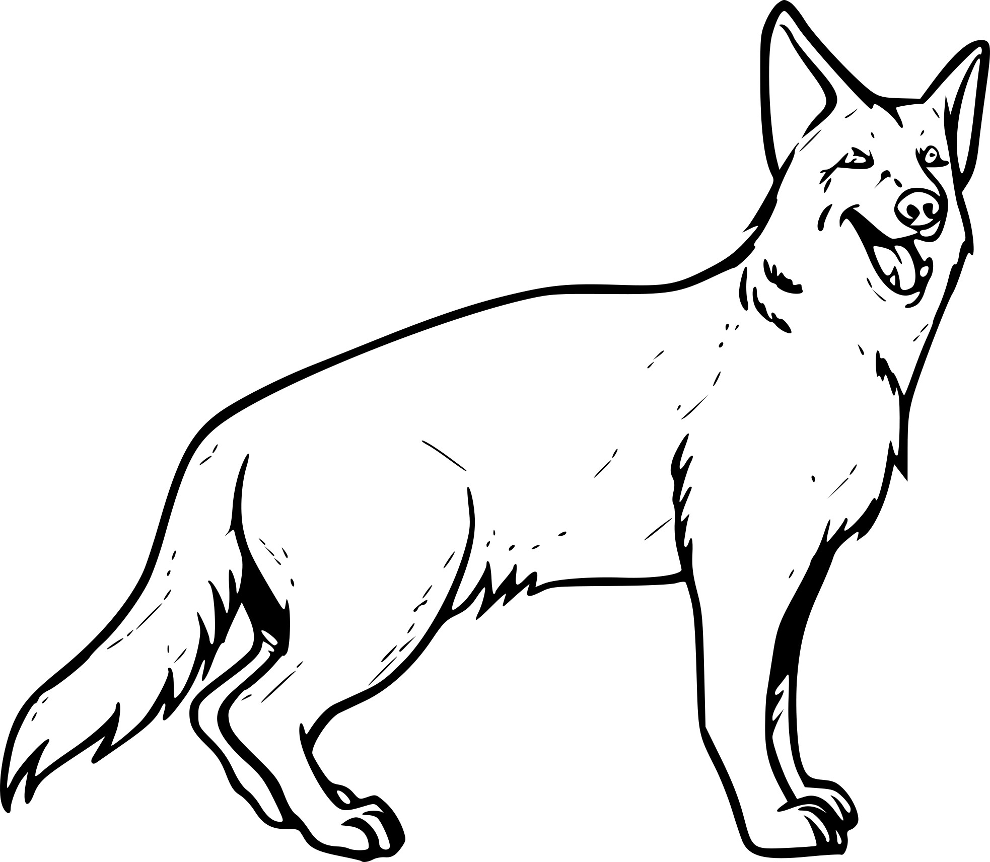 Coloriage Chien Berger Allemand