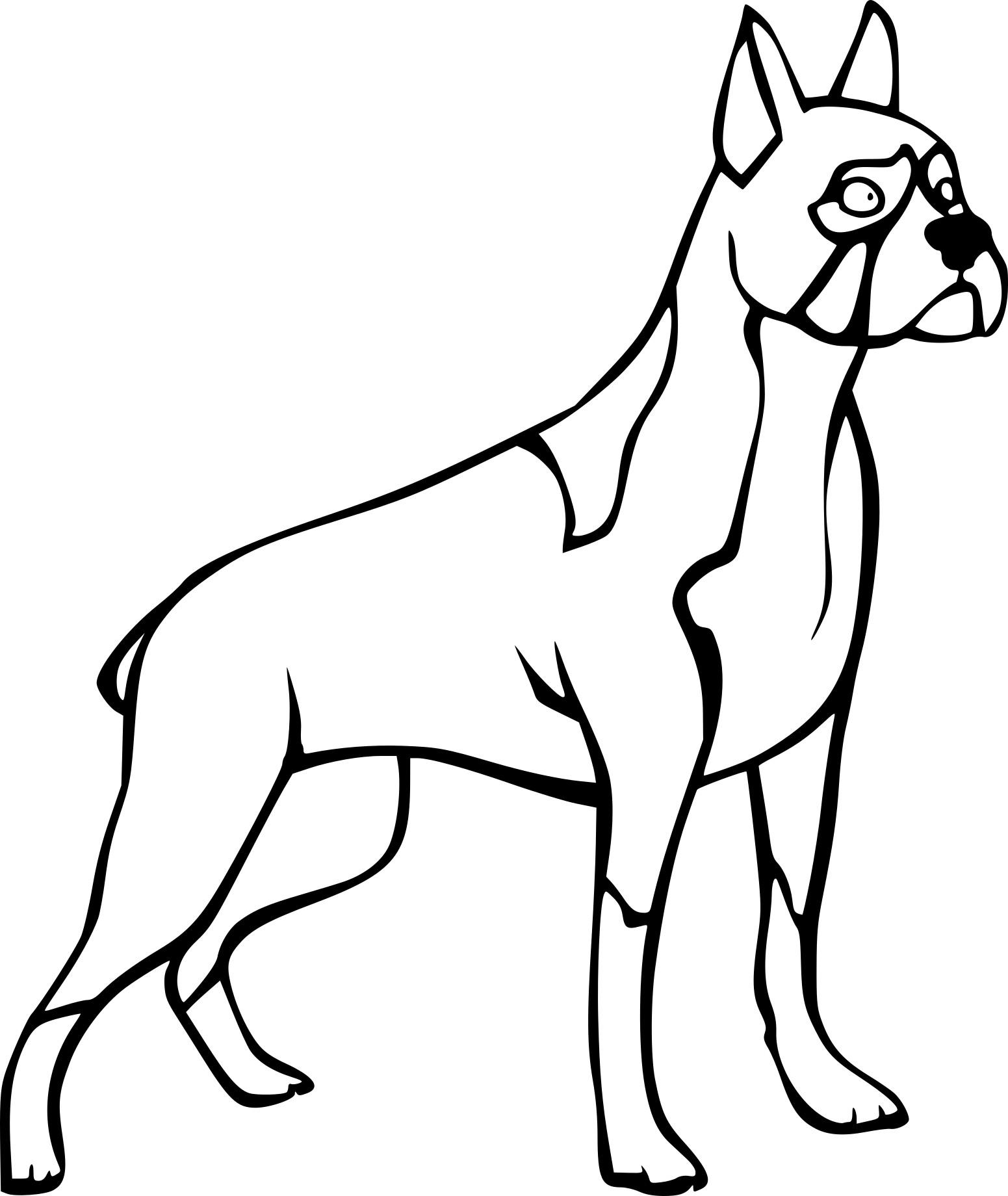 Line Drawing Of A Boxer Dog : Coloriage chien boxer à imprimer