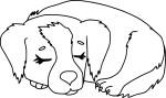 Coloriage chien qui dort