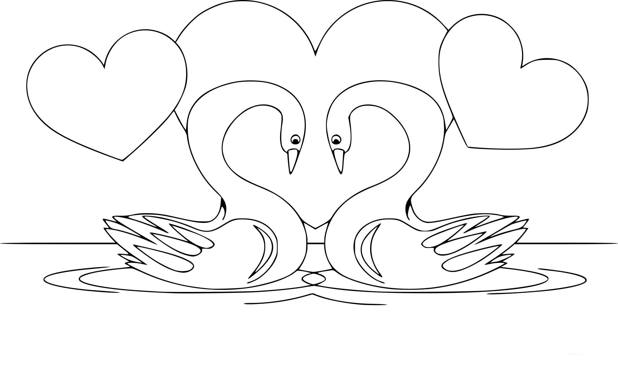 Coloriage cygne amoureux