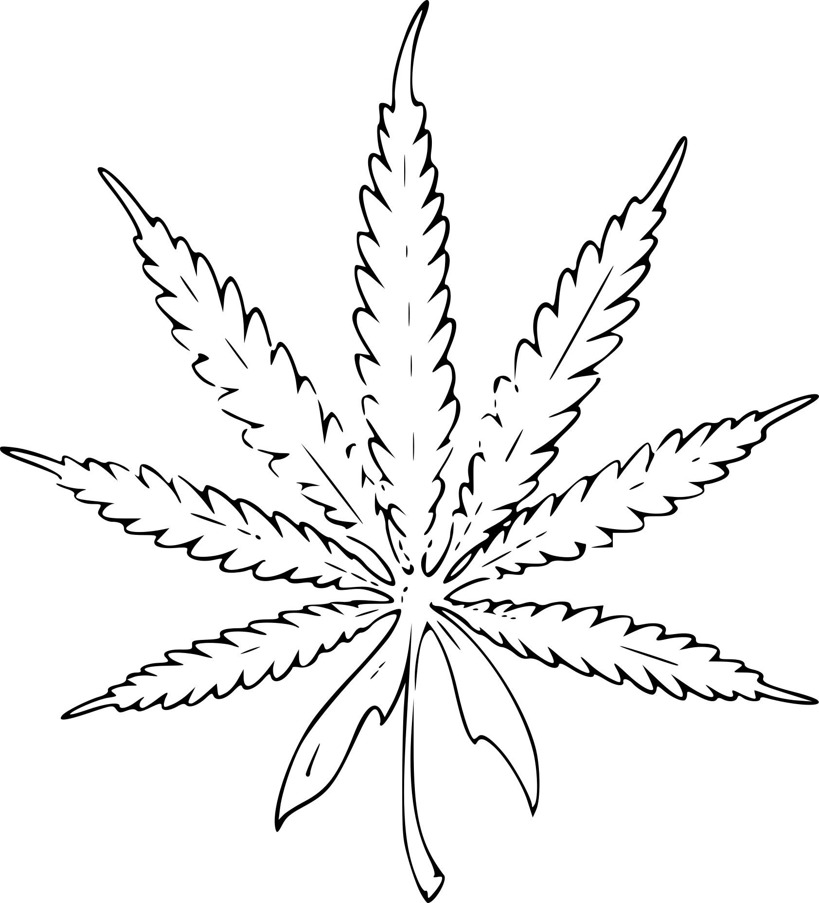 Dessin de feuille a imprimer bo71 montrealeast - Dessin feuille cannabis ...