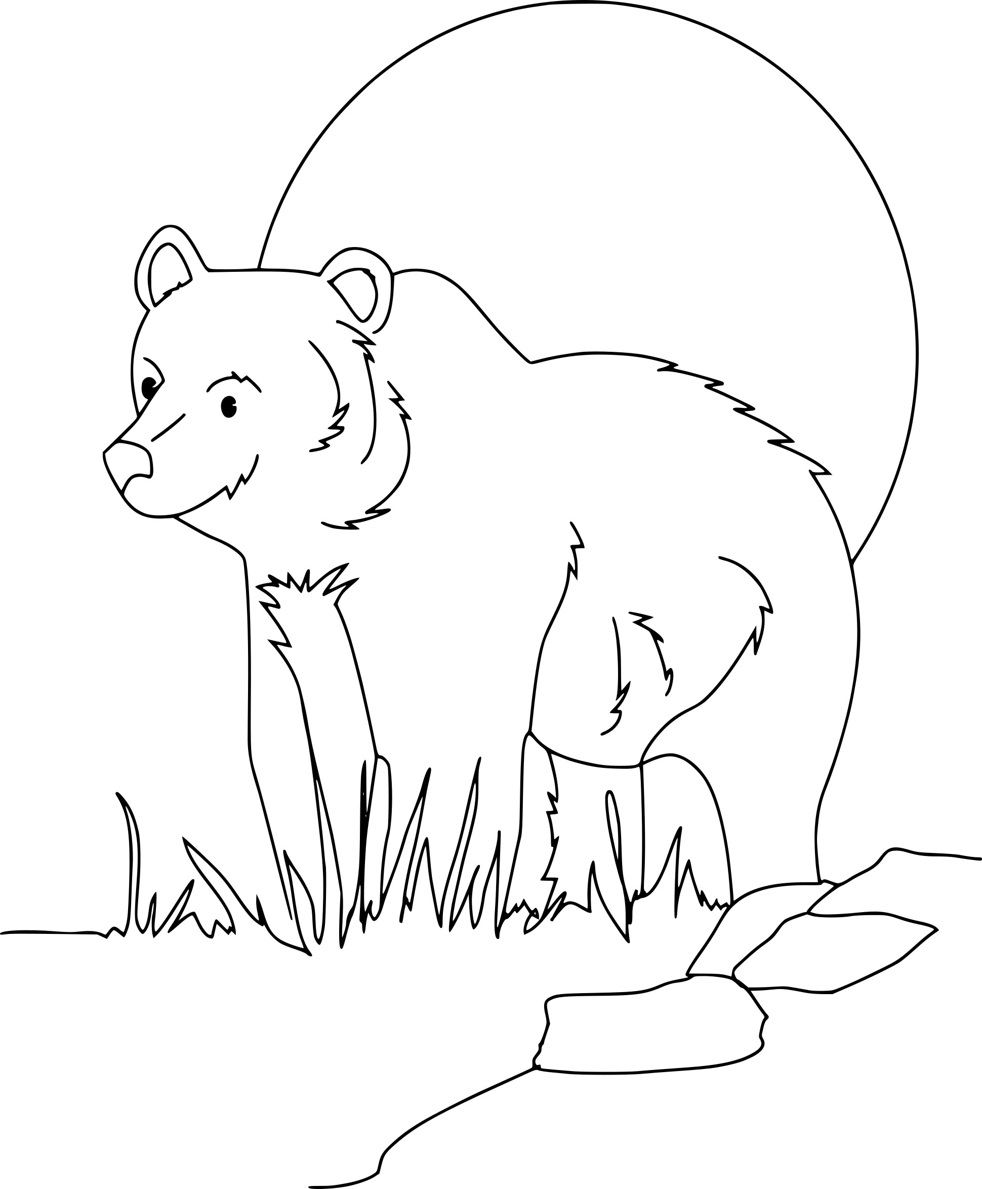 Coloriage Grizzly