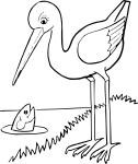 Coloriage grue oiseau