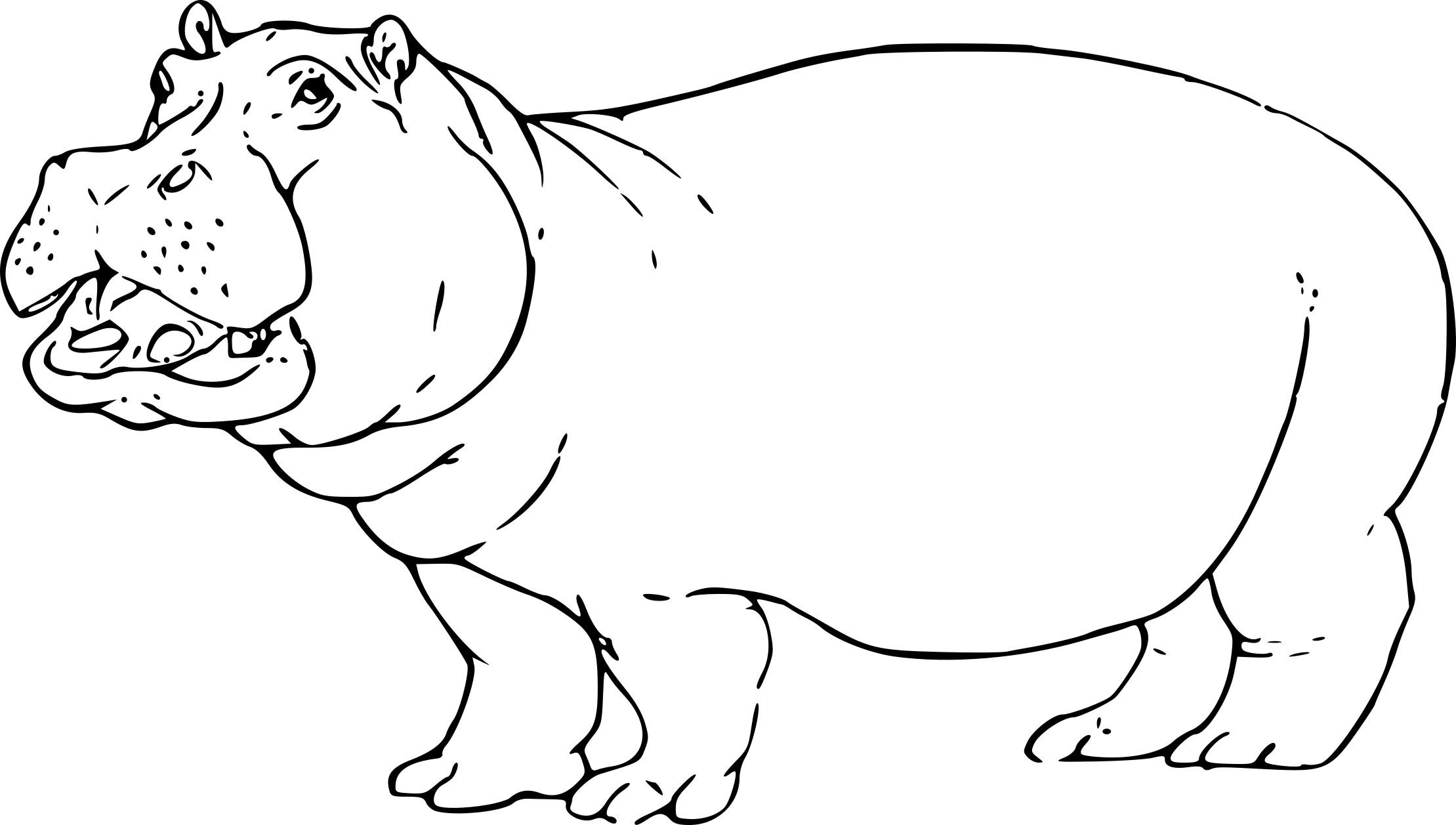 Coloriage Hippopotame à Imprimer