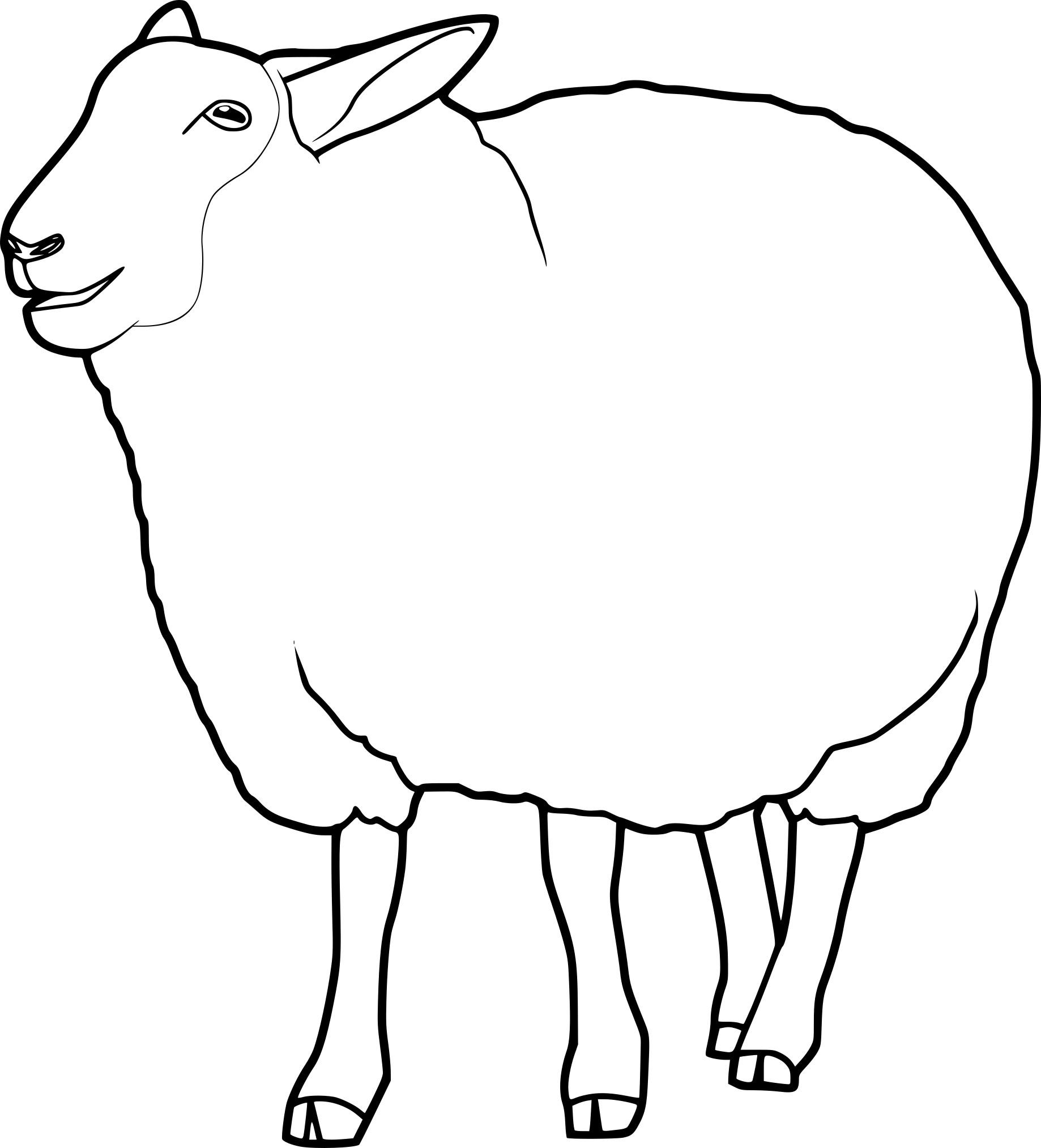 Coloriage mouton à imprimer