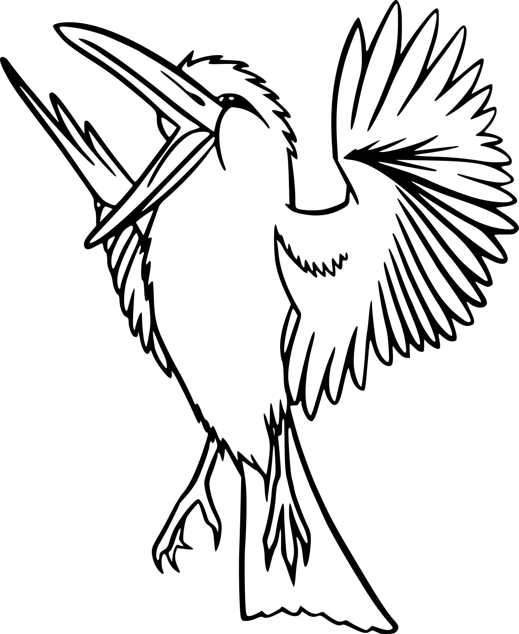 Coloriage oiseau exotique