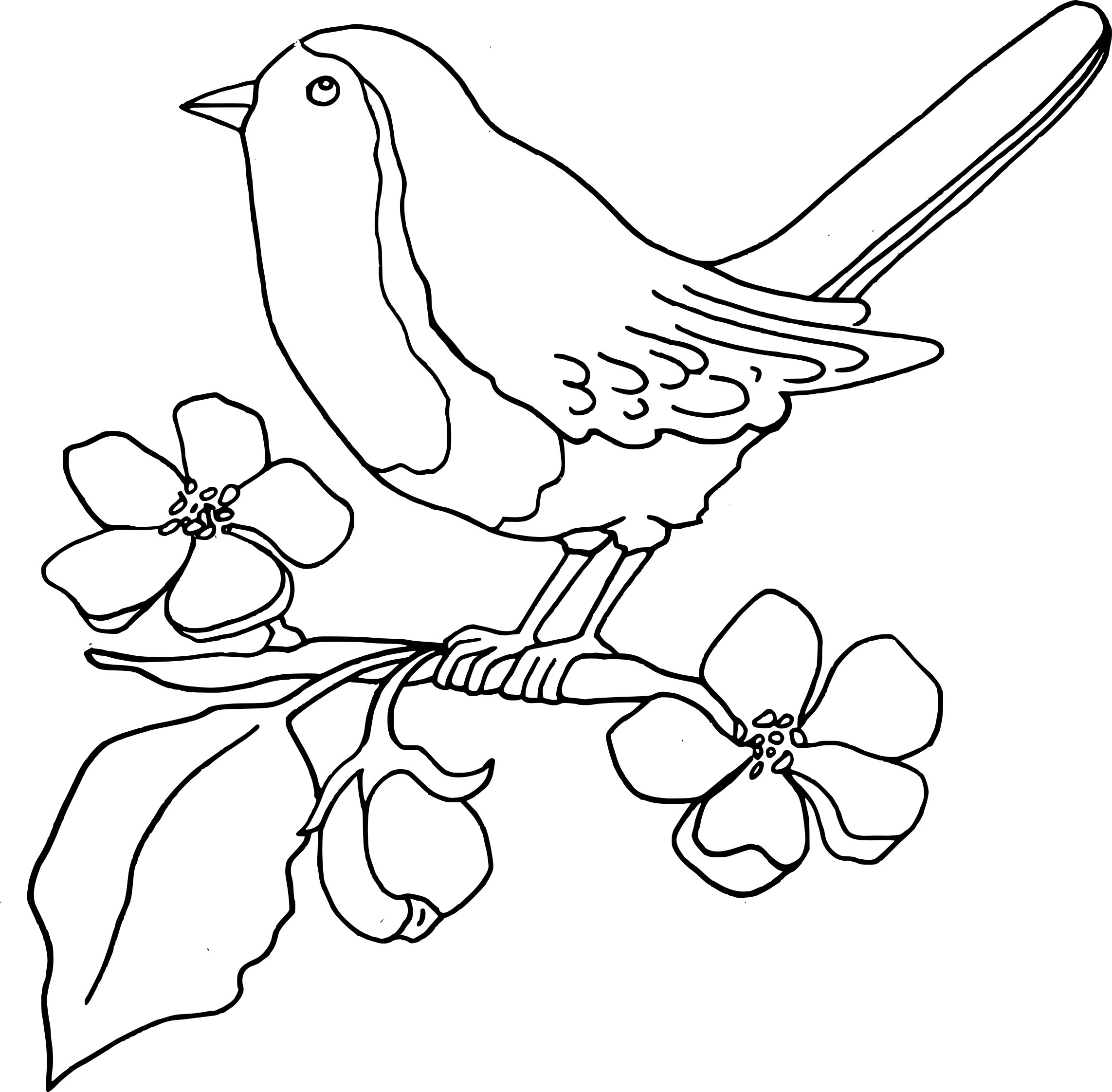 Coloriage oiseau passereau