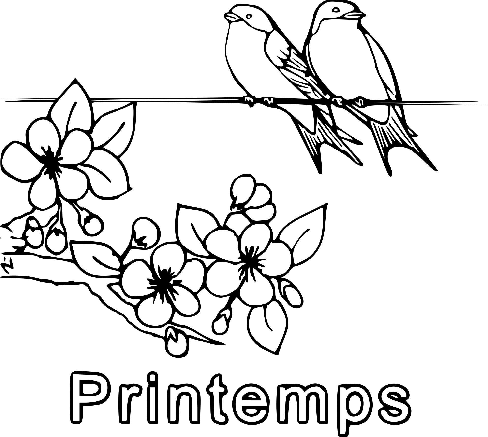 Coloriage oiseau printemps