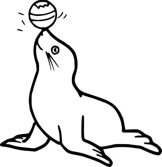 Coloriage phoque avec un ballon