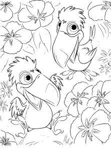 Coloriage Rio petits toucans