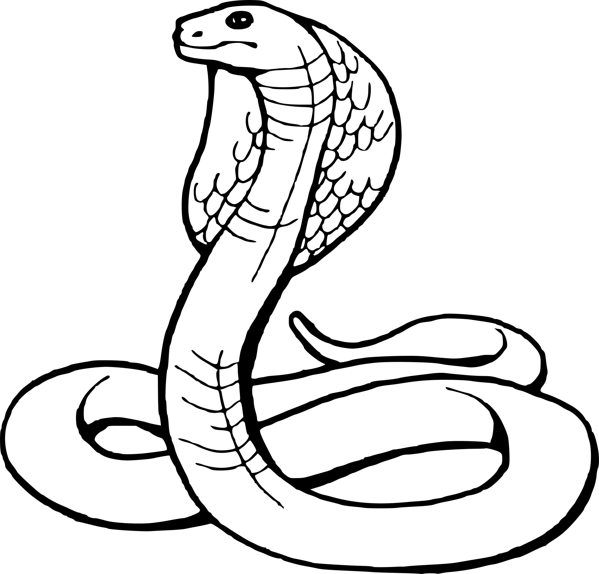 Coloriage Serpent Cobra