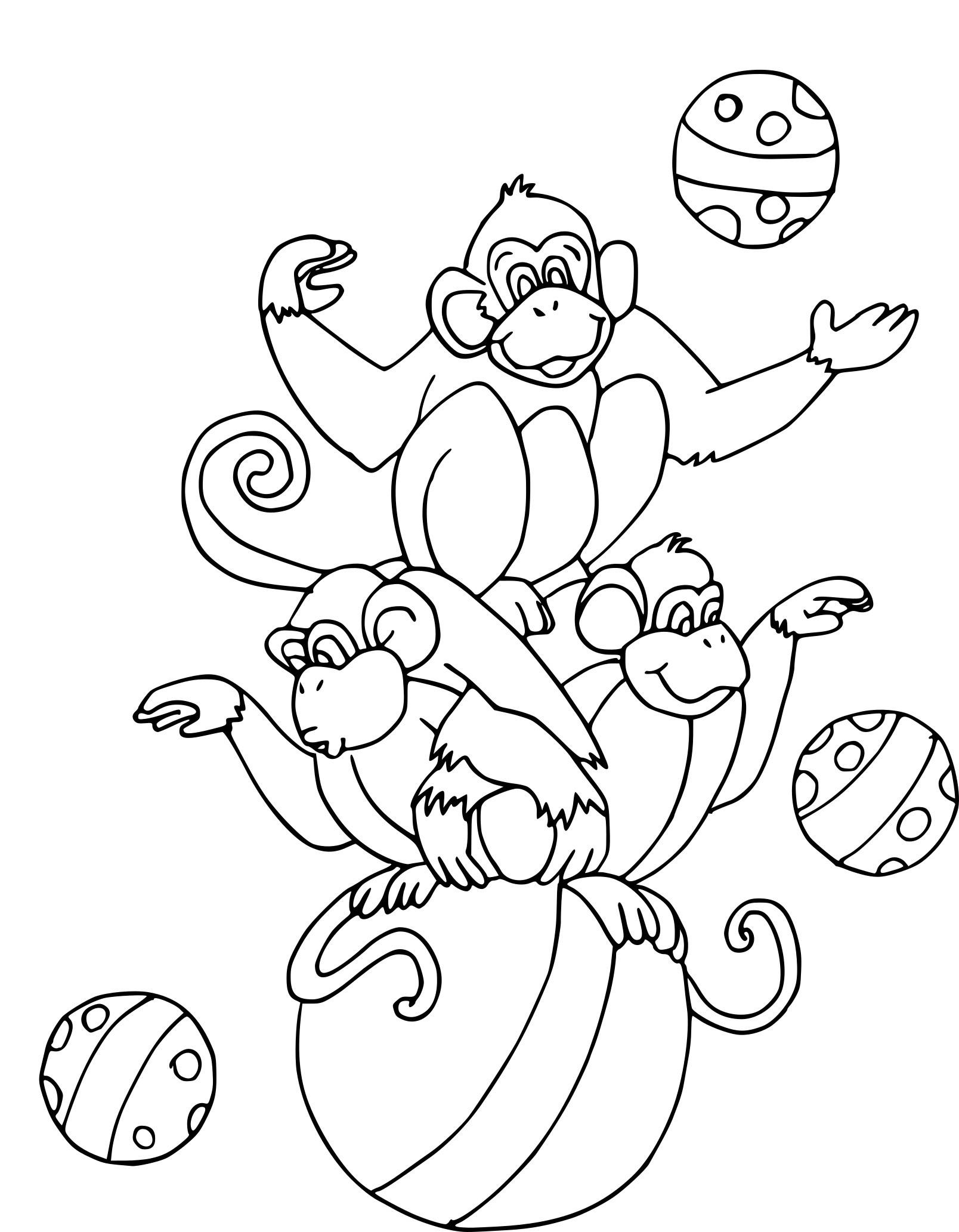 Coloriage singe jongleur