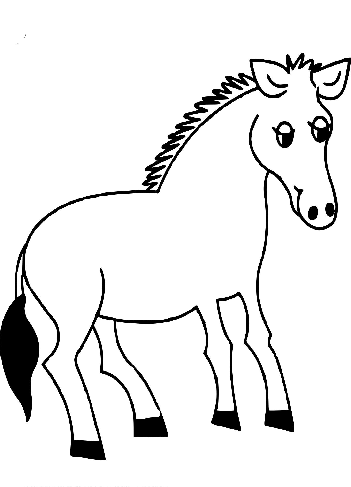 Coloriage zebre sans rayure à imprimer