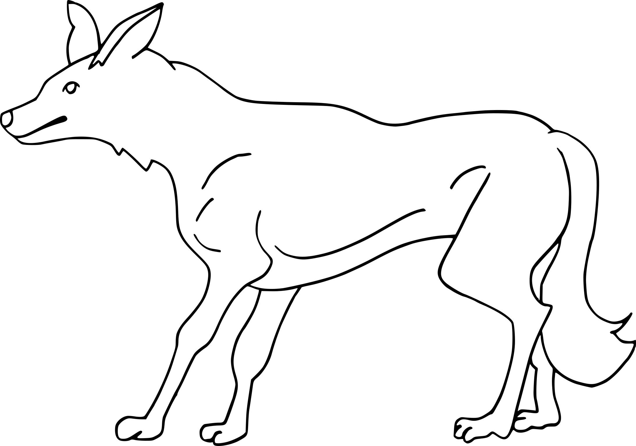 Coloriage coyote et dessin imprimer - Dessin de coyote ...