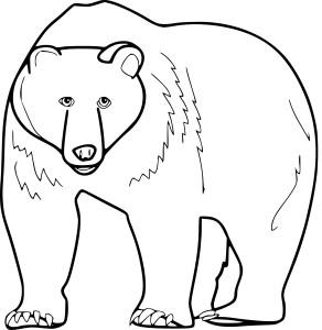 Coloriage otarie imprimer - Dessin de grizzly ...