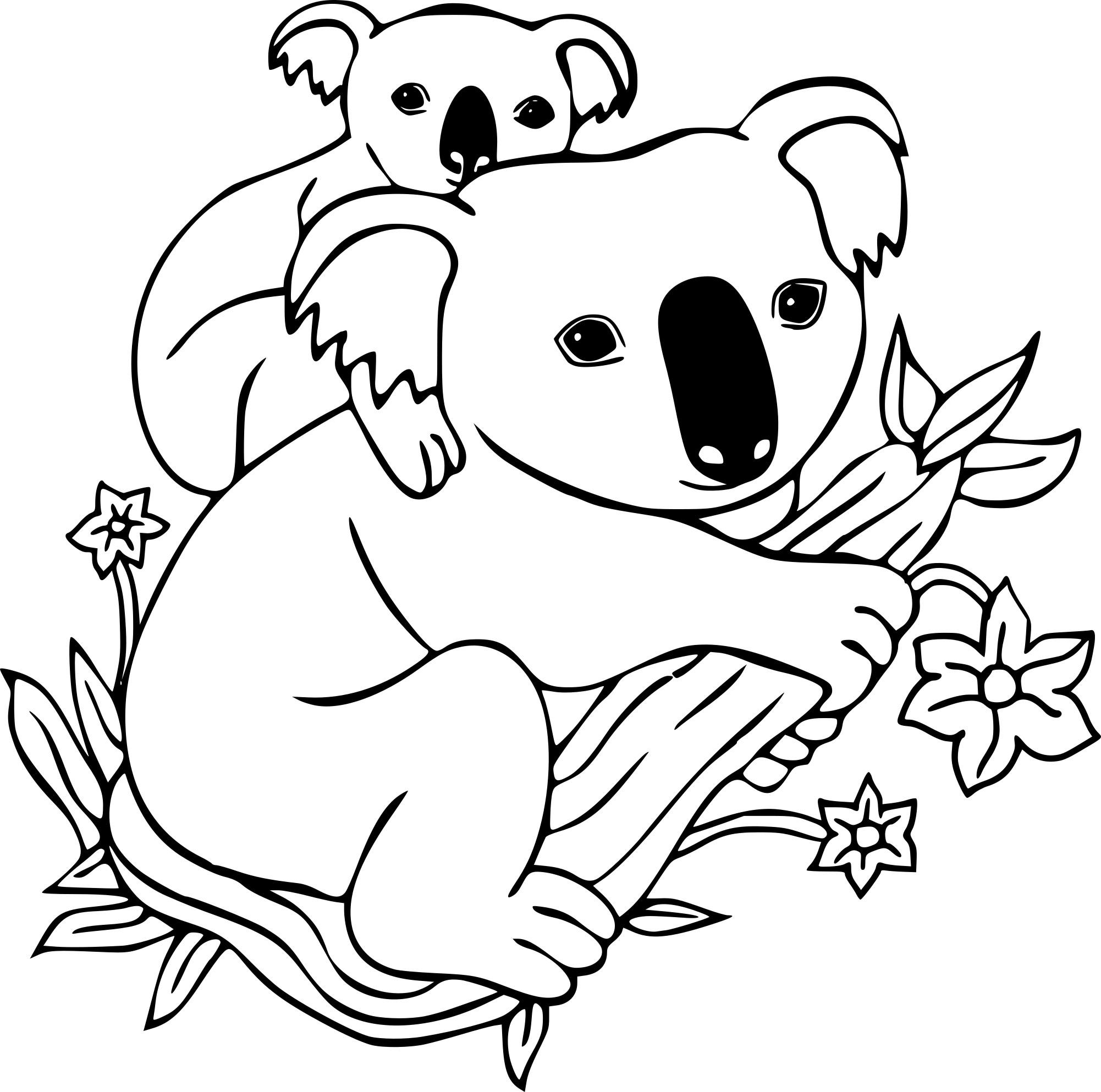 Coloriage Koala Et Dessin A Imprimer