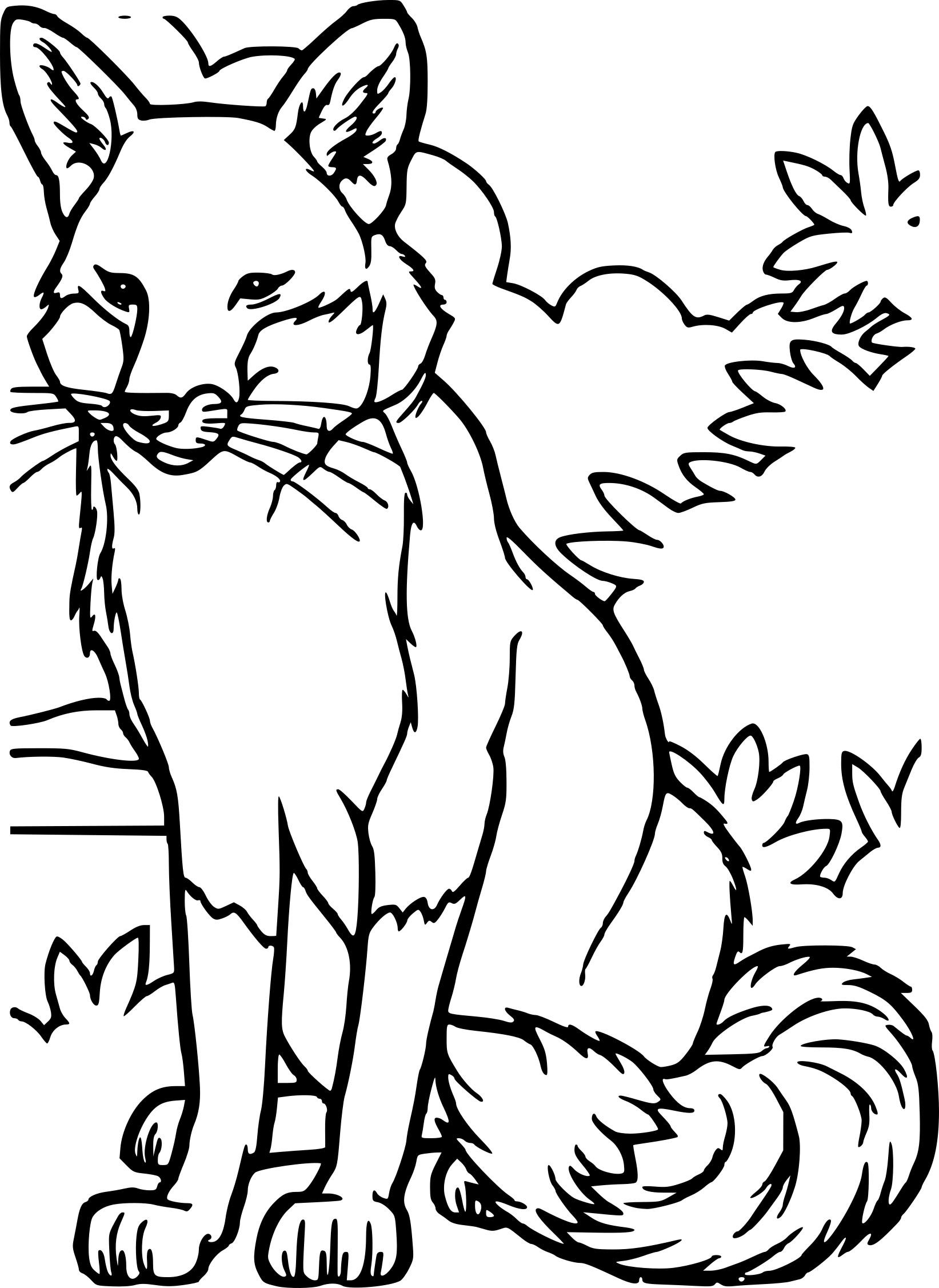 Coloriage renard et dessin imprimer - Coloriage renard ...