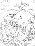 Coloriage animaux aquatiques