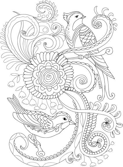 Coloriage anti stress oiseaux
