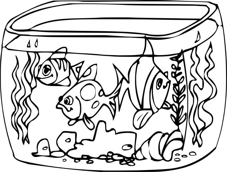 Coloriage aquarium