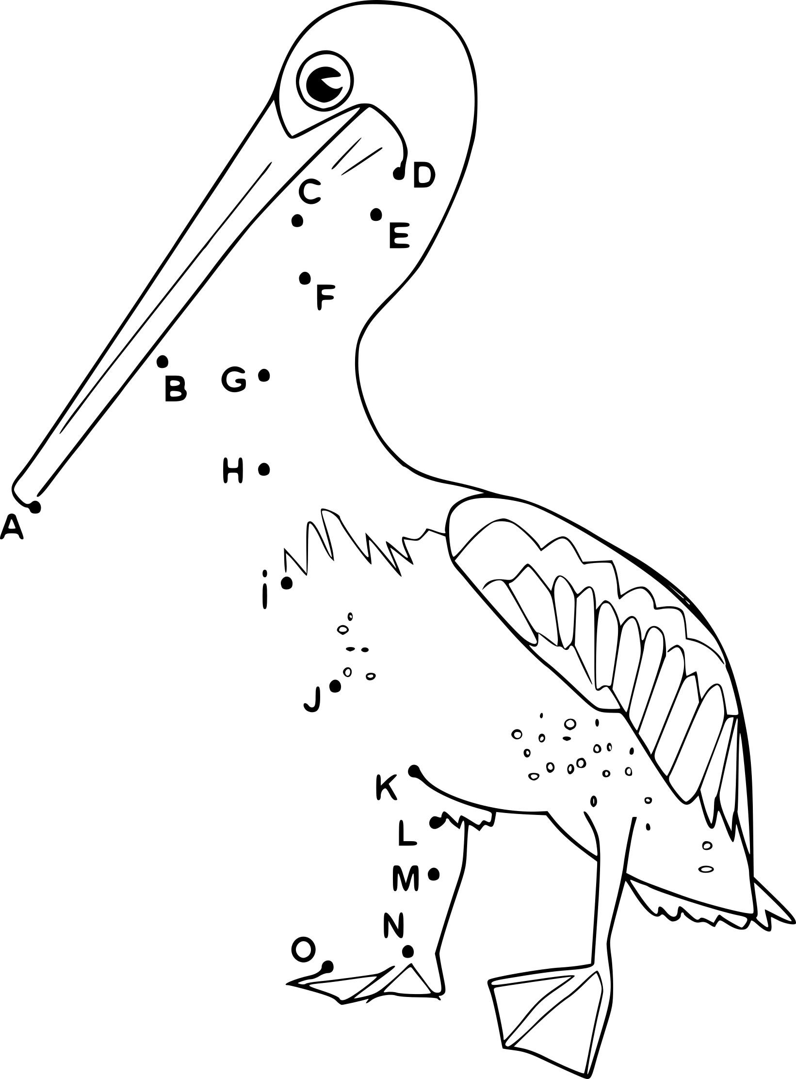 Coloriage point à relier pelican