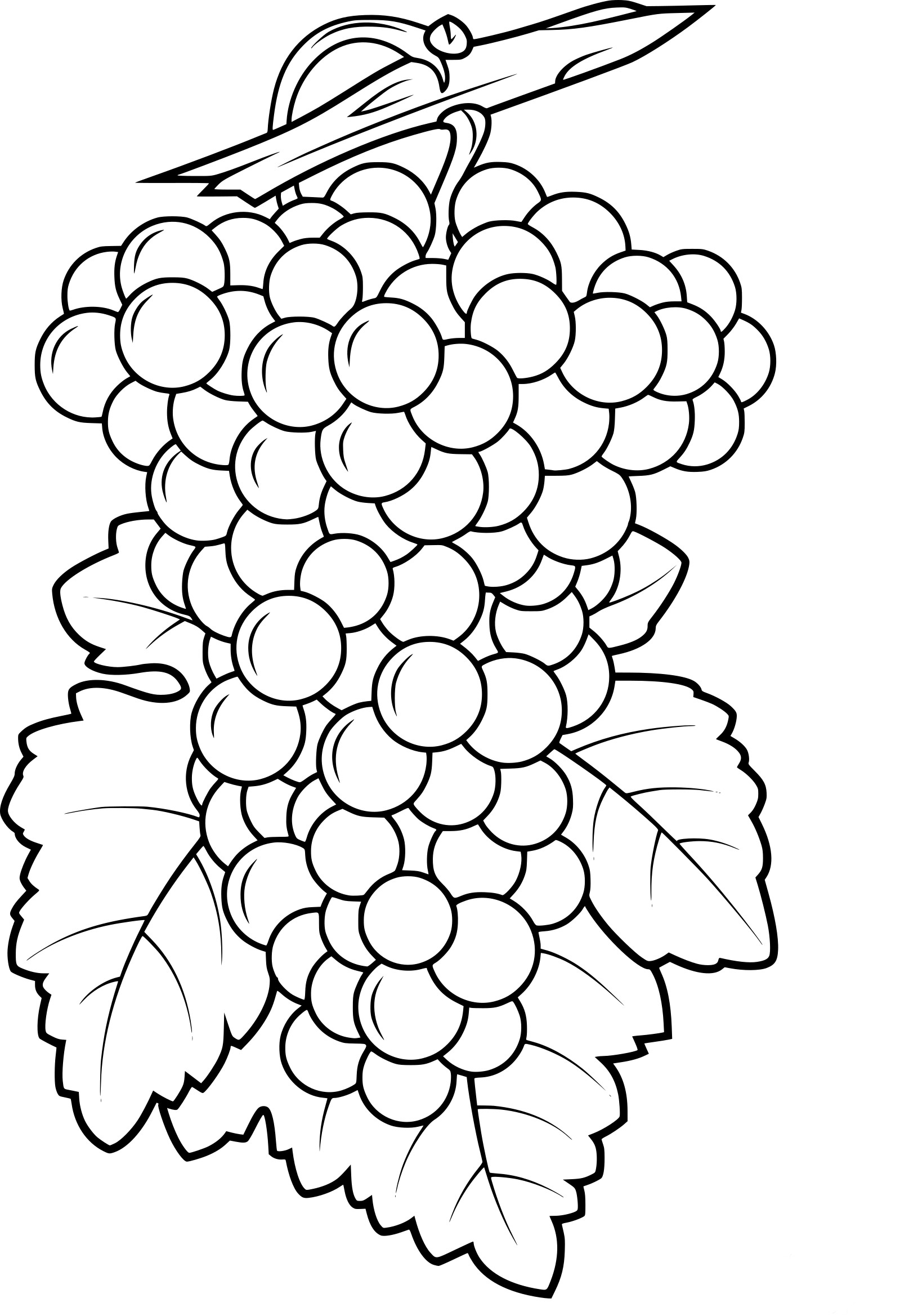 Coloriage raisin