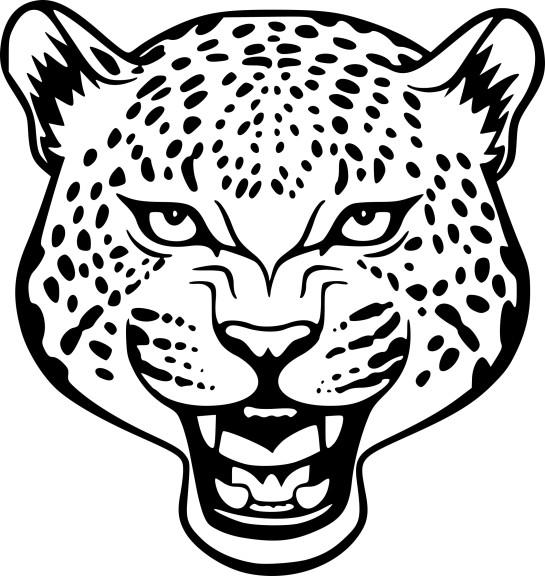 Coloriage tete de Jaguar