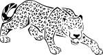Jaguar dessin