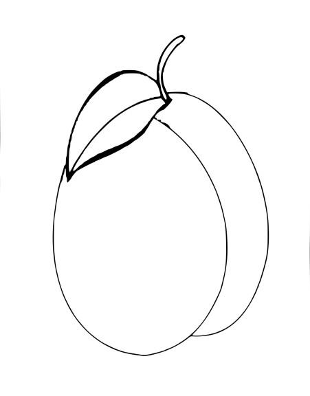 Prune coloriage