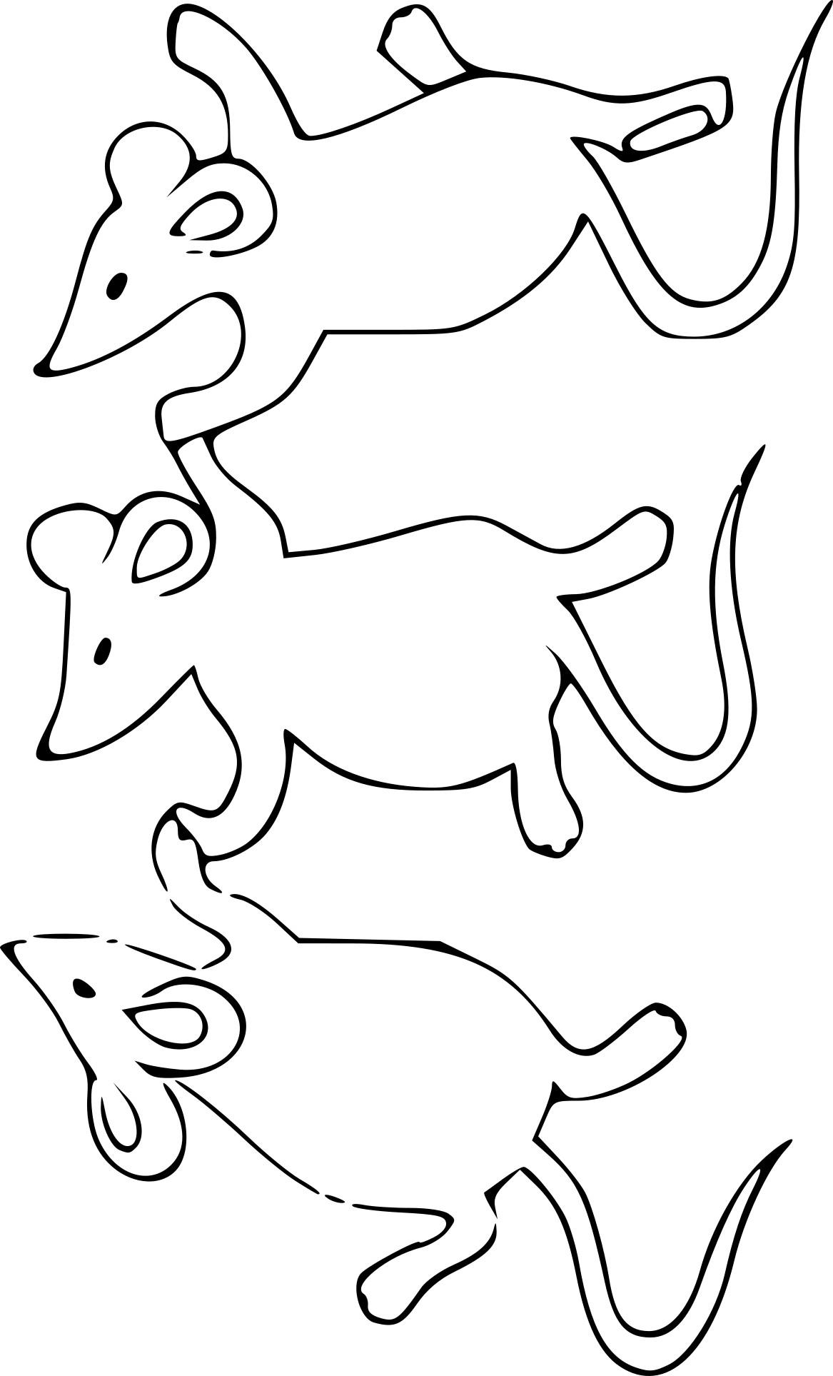 Coloriage 3 souris à imprimer