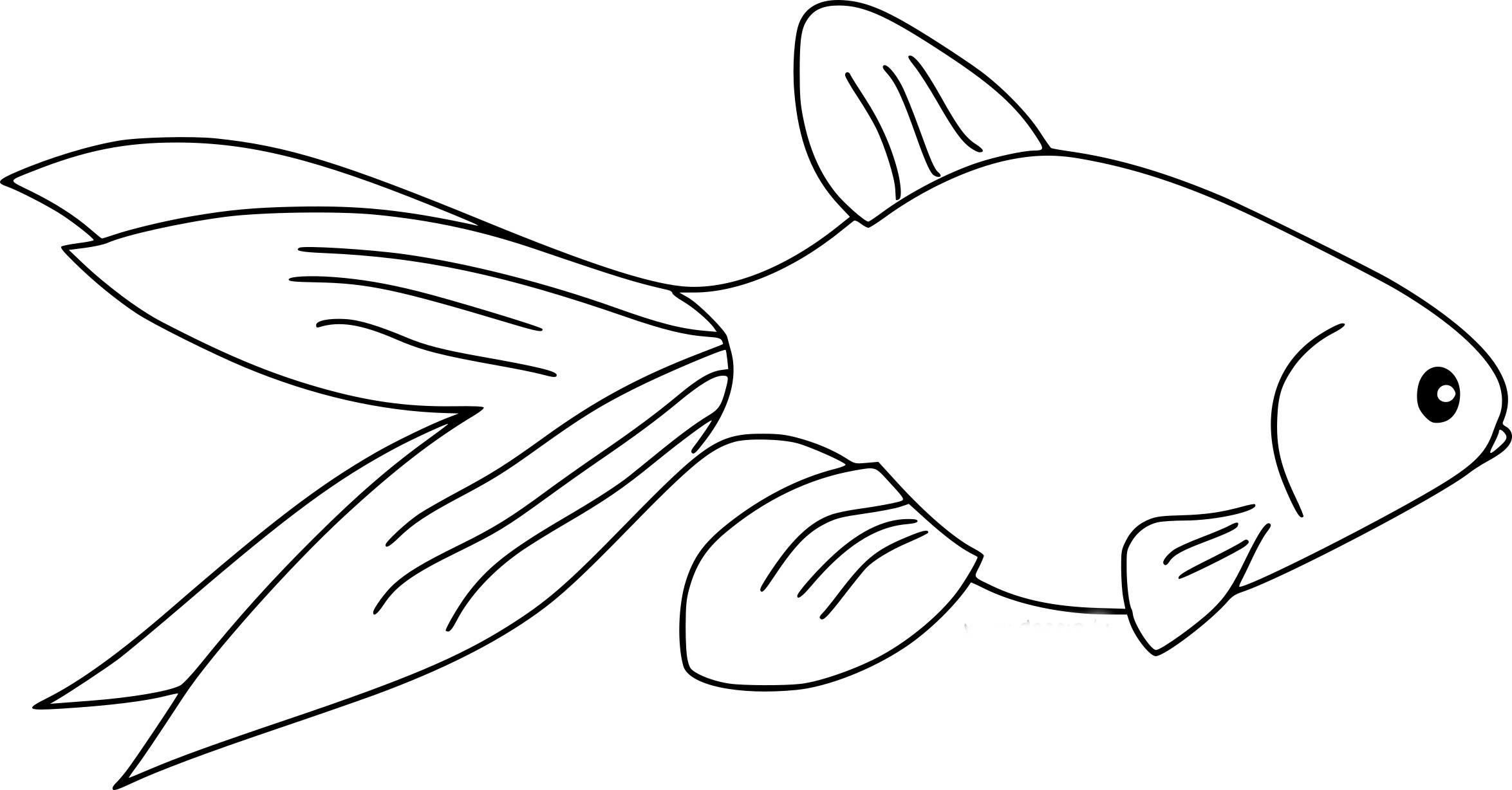 coloriage poisson rouge