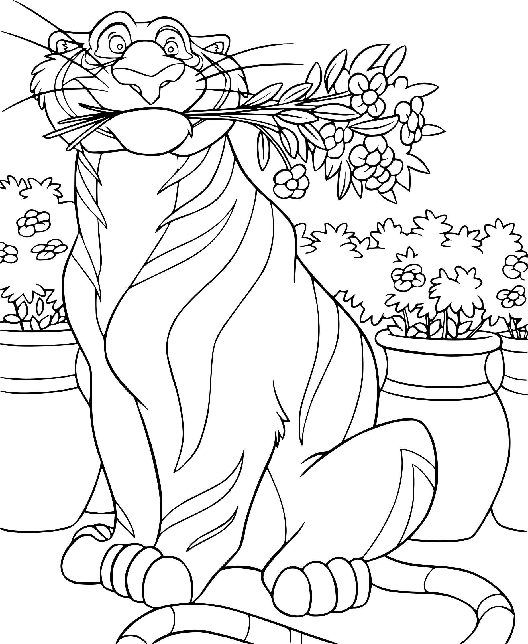 Coloriage Rajah Aladdin