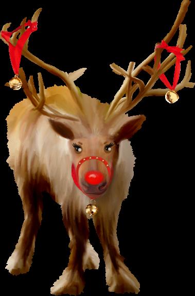 Cerf Noel