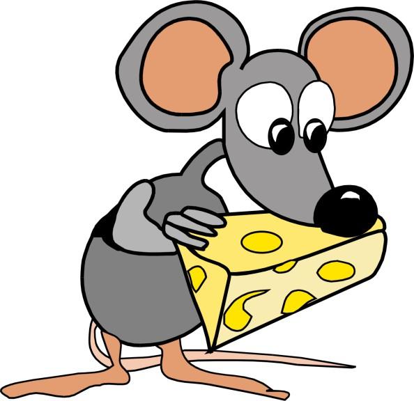 Souris avec du fromage