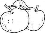 Coloriage deux pommes